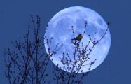 Ученые рассказали о влиянии Луны на сон людей
