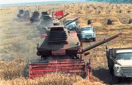 Белорусский блогер развеял миф про «натуральные советские продукты»