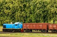 Под Бобруйском уснувшего на рельсах мужчину не разбудил проехавший над ним поезд