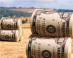 В Беларуси 55% предприятий - убыточны