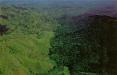 Президент Доминиканы намерен отгородиться от Гаити стеной