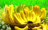 Лукашенко собрался выращивать бананы