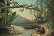 Найдены древнейшие землеройные и лазающие по деревьям млекопитающие
