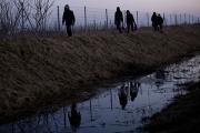 Отряд венгров с четырьмя тепловизорами защитит Сербию от мигрантов