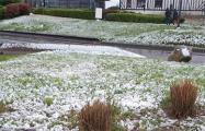 В последний день апреля во Франции выпал снег