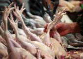 Беларусь ограничила ввоз птицы на территорию страны