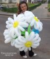 Лидчанка покорила итальянцев поделками из воздушных шаров