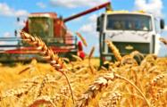 В «битве за урожай» появились первые потери