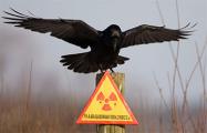 Деньги радиацией не пахнут