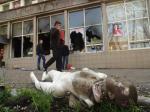 Мародеры грабят магазины Мариуполя