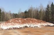 Жители Зеленого Бора - властям: Почему отходы все еще лежат рядом с нашим поселком?