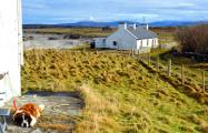 В Ирландии выставили на продажу необитаемый остров