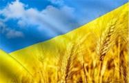 Украина обновила рекорд по урожаю зерновых