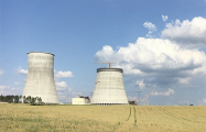 Президент Литвы: РФ может превратить БелАЭС в ядерное оружие