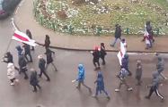 Боровляны вышли на шествие с национальной символикой