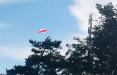 Партизаны провели смелую акцию в гродненской Ольшанке