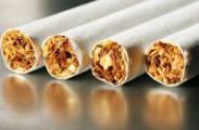 Беларусь – главный источник нелегального трафика табака в Литву