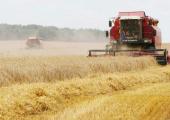 Поддержка агропрома Беларуси из бюджета за 6 лет сократилась на 1 миллиард долларов