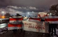 Как белорусы протестовали 23 февраля