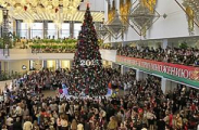 Главная елка Беларуси зажжет свои огни во Дворце Республики 27 декабря