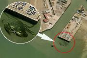 У берегов Великобритании «нашли» гигантского краба