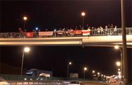 Видеофакт: Мост на МКАД заняли протестующие
