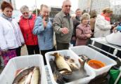 Рыбные ярмарки в Минске будут проходить до Нового года