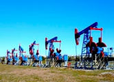 Беларусь рассчитывает добыть 1,6 миллионов тонн нефти за год
