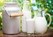 Пружанщина отрывается по молоку