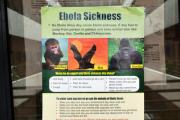 В Румынии госпитализирован мужчина с подозрением на лихорадку Эбола