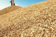 Беларусь заработает на продовольствии 4 млрд.