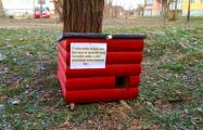 В Кобрине установили теплые домики для бездомных котов