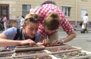 МТС доложил об увеличении турпотока в Беларусь