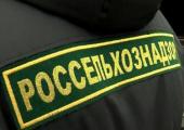 Россельхознадзор ограничил поставки с двух белорусских мясных предприятий