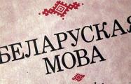 Актывісты заклікаюць грамадзян пры перапісе назваць роднай мовай беларускую