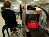 Вину за поломки читалок возложили на сканеры в аэропортах