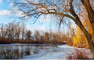 Завтра в Беларуси ожидается до 19 градусов
