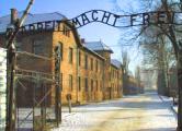 Охранник Освенцима предстанет перед судом в Германии