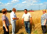 На время «битвы за урожай» в Слуцке сняли ограничения на торговлю спиртным