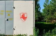 Партизаны Колодищей украсили весь агрогородок символами свободы