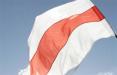 Бобруйские партизаны украсили город национальными флагами
