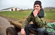 На ферме под Хотимском пастух получил расчетный лист — $58 за месяц