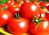Белорусы завалили рынки Брянска польскими помидорами