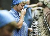«Ковры Бреста»: производство стоит, денег нет