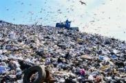 """В Беларуси должна появиться """"мусорная концепция"""""""