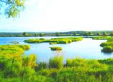 На древнейшем природном объекте Беларуси откроют экологическую тропу