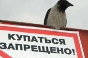 Летних зон отдыха в Беларуси становится меньше