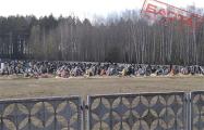 На городском кладбище в Столбцах – десятки новых могил