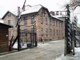 В Польше умер старейший узник Освенцима