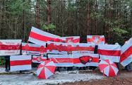 По всей Беларуси проходят вечерние акции протеста